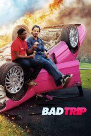 Bad Trip (2021) ทริปป่วนคู่อำ พากย์ไทย