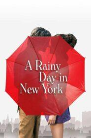 A Rainy Day in New York (2019) วันฝนตกในนิวยอร์ก พากย์ไทย
